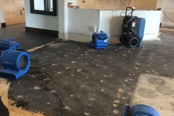 Water Damage Restoration in Kennedale, TX