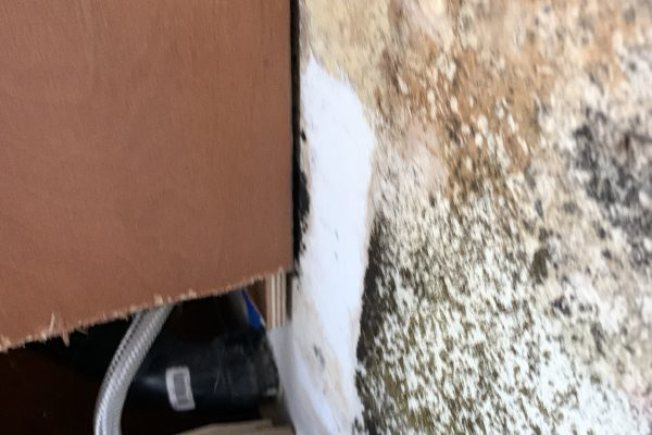 Drain Damages Cleaning and Mold Remediation