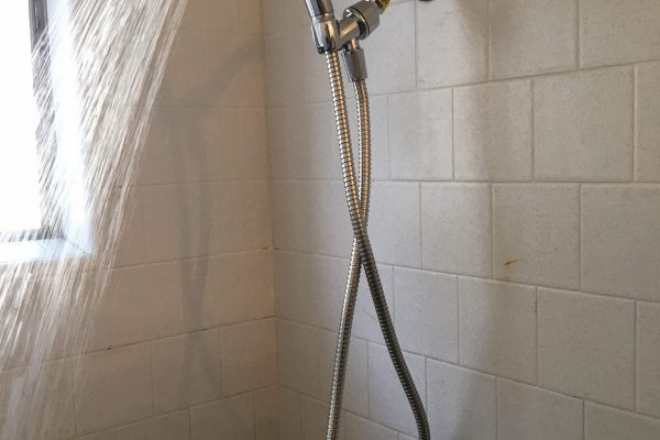 Replace bathroom sink and shower head in Escondido California