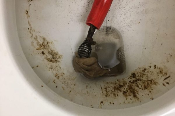 Repaired Clogged Toilet in San Diego, CA
