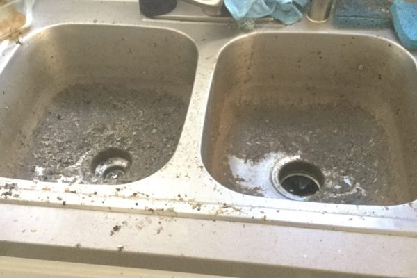 Kitchen Drain Cleaning in La Mesa, CA.