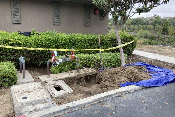 Repaired Leaking Back Flow in San Diego, CA