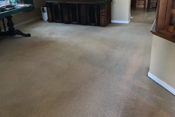 Carpet Cleaning Menifee, California