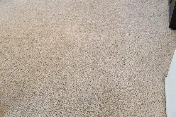 Carpet Cleaning Menifee