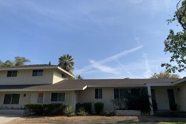 Tree Removal Northridge, California