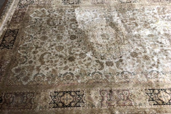 Wool Area Rug Stain Removal