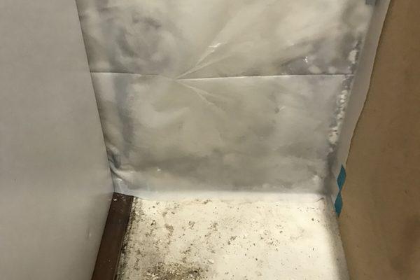 Mold Remediation in Ladera Ranch, California