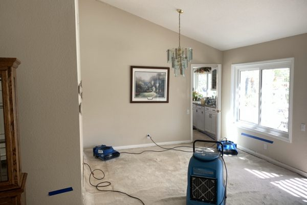 Water Damage and Mold Removal in Mission Viejo, California