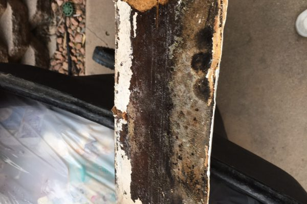 Mold Clearance Testing in San Clemente, CA