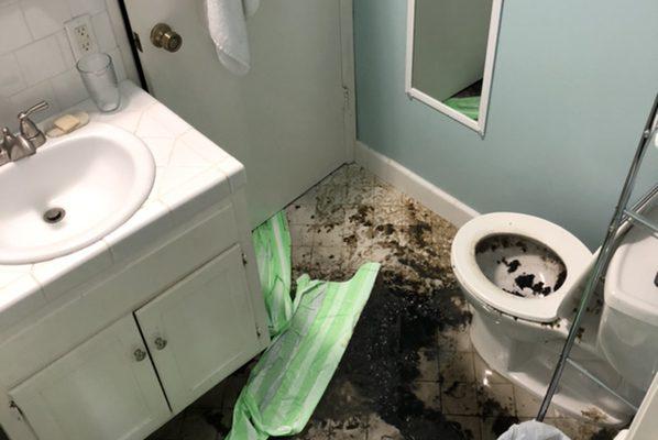 Sewage Damage Repair in Laguna Beach, CA