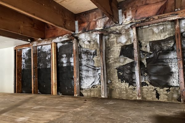Mold Remediation in Irvine, CA