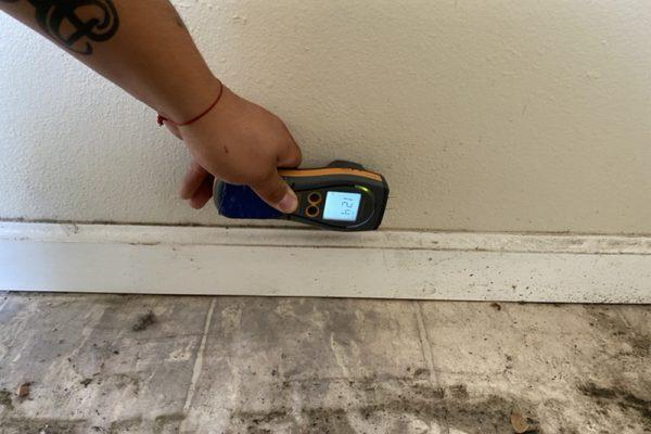 Mould Remediation in Whittier, CA
