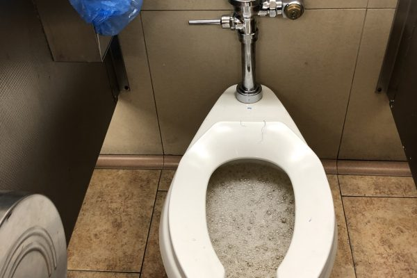 Commercial Clogged Toilet Repair in Santa Clarita, California
