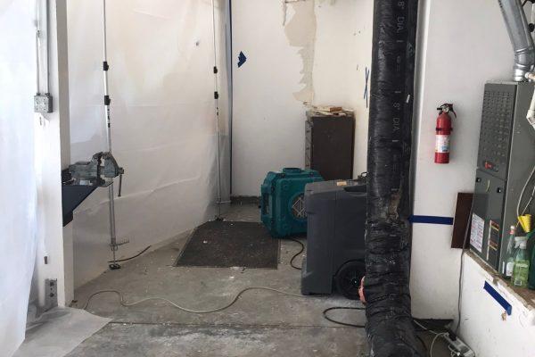 Mold Remediation In Murrieta, CA