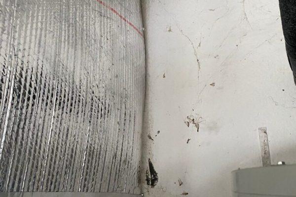 Mold Inspection Test in Oceanside, CA