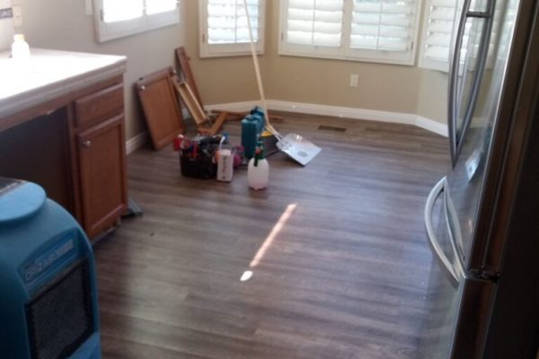 Full House Remediation Inspection in Vista, CA