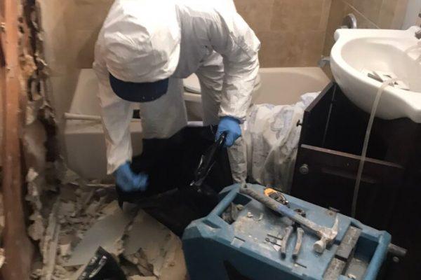 Mold Infestation Test in Oceanside, CA