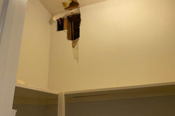 New House Mold Examination in Escondido, CA